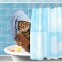 Detergenti, detersivi