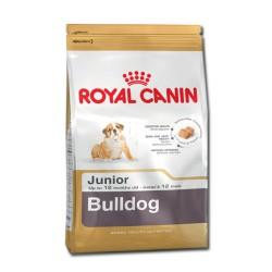Royal Canin dog BULLDOG PUPPY