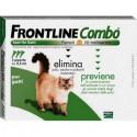 frontline gatto