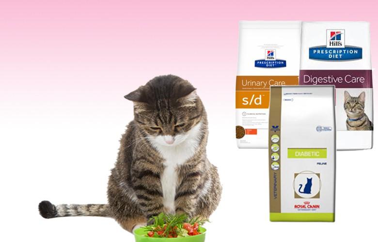 Diete gatti