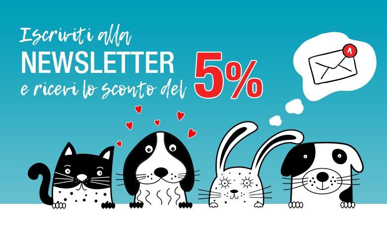 Newsletter-5%