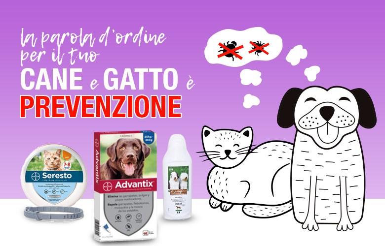 Antiparassitari per gatti e cani